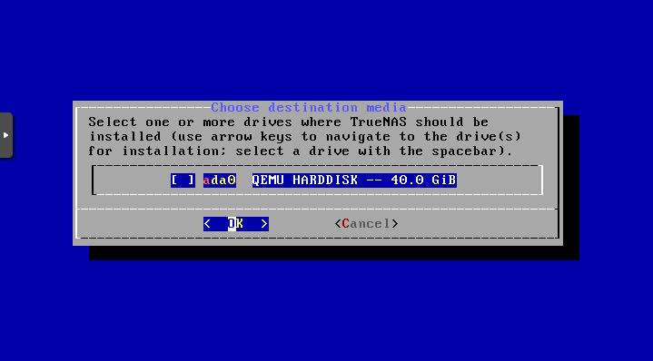 large storage vps for truenas